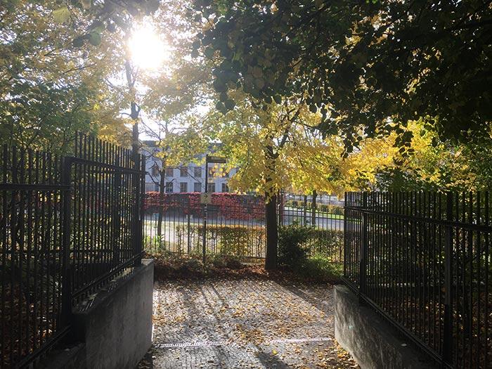 Ausgang Invalidenfriedhof, Sonne scheint durch die Bäume