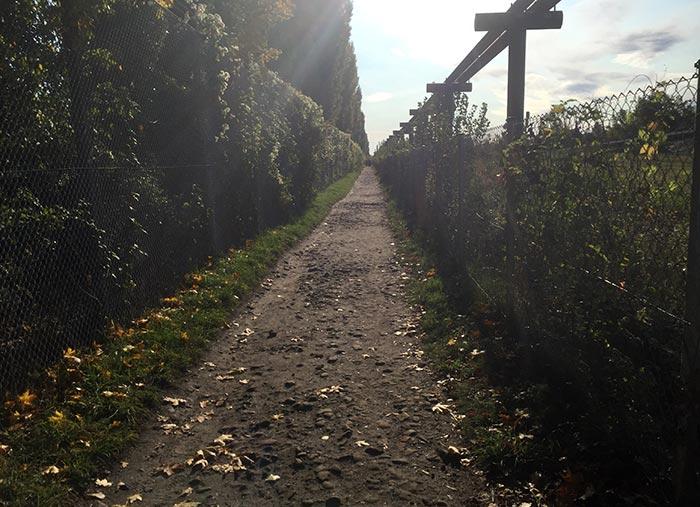 Mariendorfer-Hafen-Weg