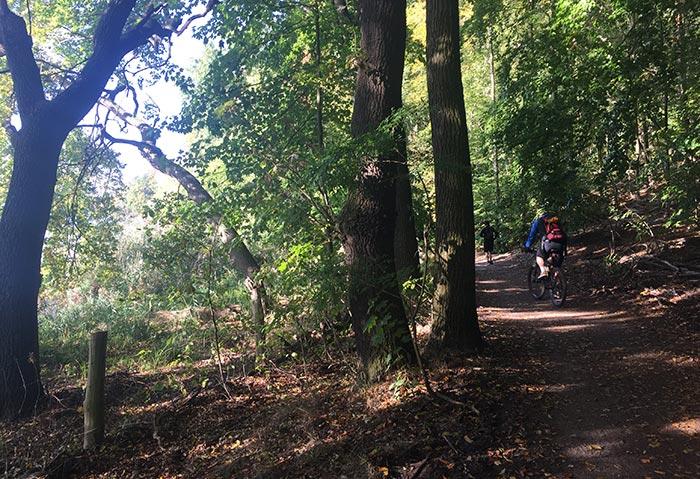 Läufer und Radbegleiter auf schmalem Uferweg