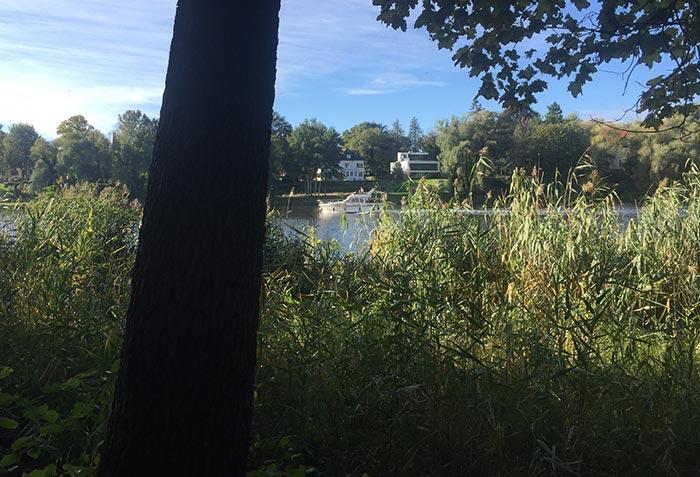 Ufer mit Blick auf vorbeifahrendes weißes Motorboot
