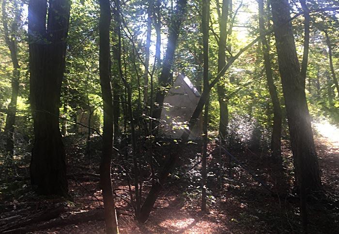 Waldbäume mit Rückseite von Grabstätten hinter dem Zaun