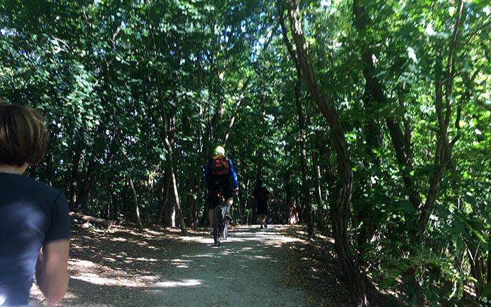 Läufer und Radbegleiter auf Weg zwischen Bäumen