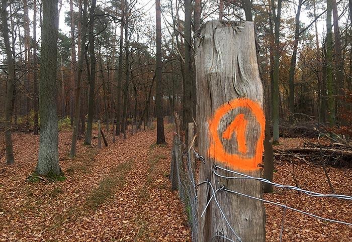 Aufgesprühte neon-orange 1 an einem Zaunpfeiler