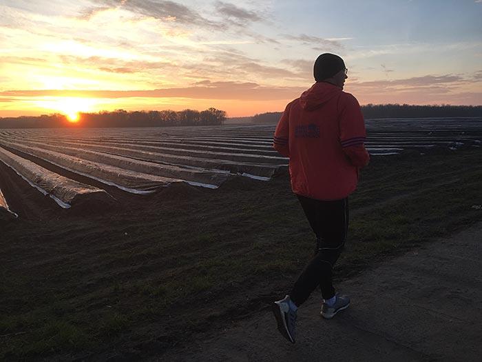 Läufer an einem Spargelfeld im Sonnenaufgang