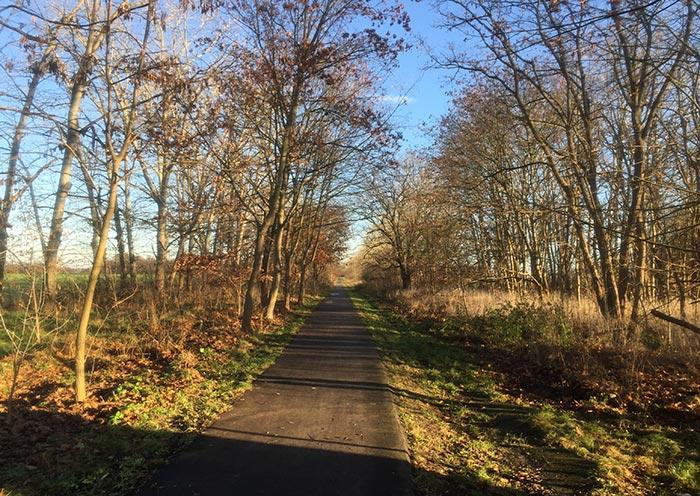 Fuß- und Fahrradweg nach Heinersdorf im Sonnenlicht