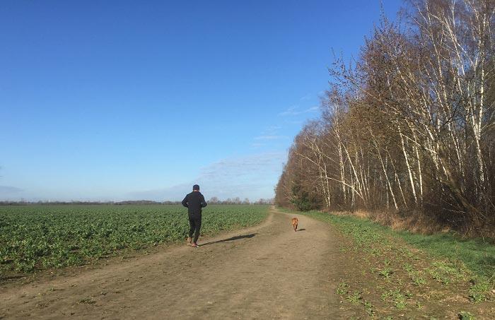 Läufer mit Hund am Feldrand