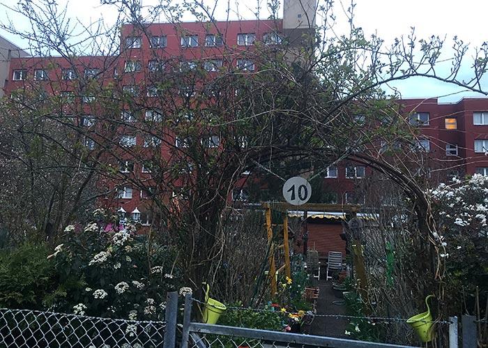 Idyllischer Kleingarten, im Hintergrund Hochhäuser