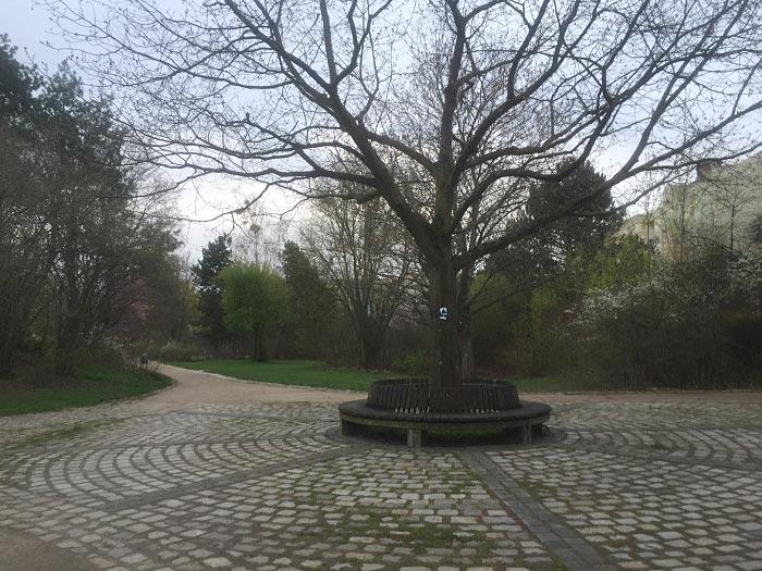 Kreisrund gepflasterter Platz mit Baum in der Mitte in einer Parkanlage