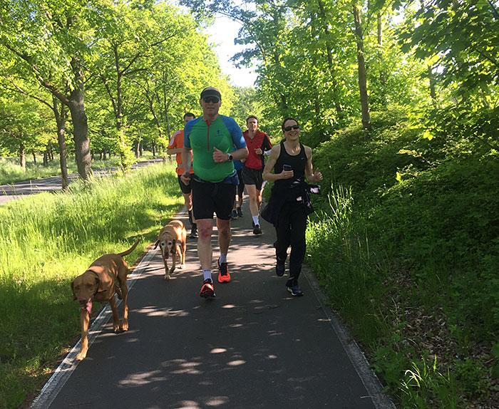 Lächelnde Läufer*innen mit Hunden