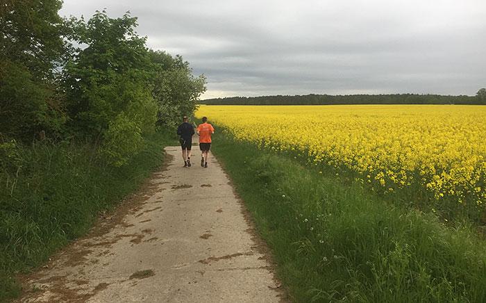 Läufer neben einem gelb blühenden großen Rapsfeldes
