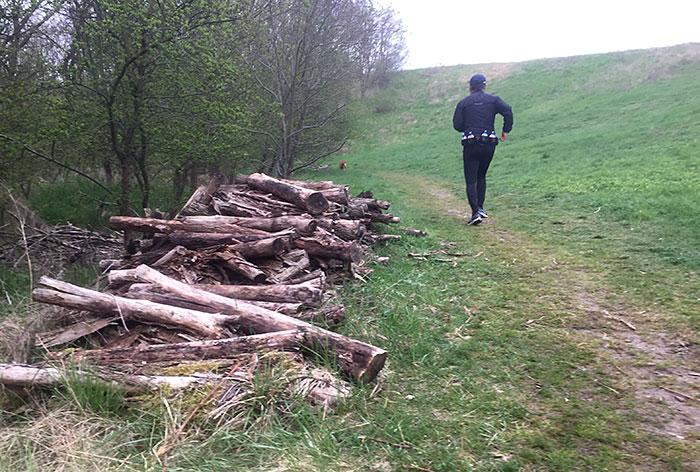 Läufer, im Vordergrund Holzstapel