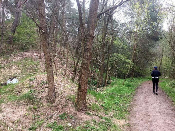 Läufer im Gebiet Weinbergsfichten, neben Pfad geht ein kleiner Hügel steil hinauf