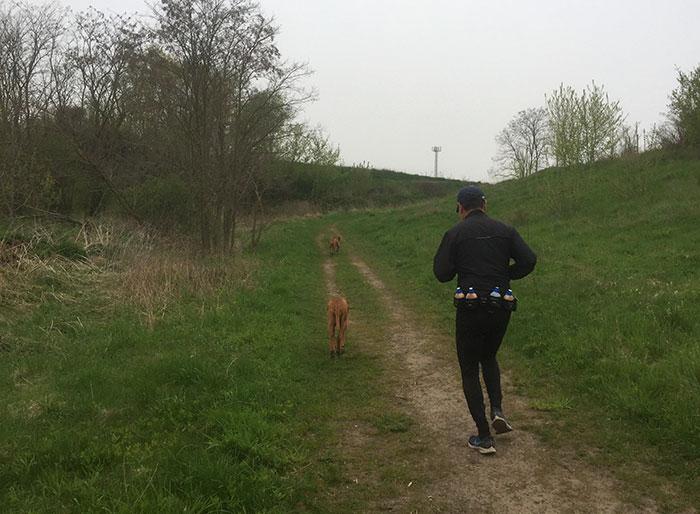 Läufer mit Hunden, im Hintergrund ein kleiner Turm