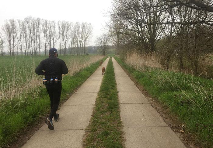 Läufer mit Hunden auf Plattenweg