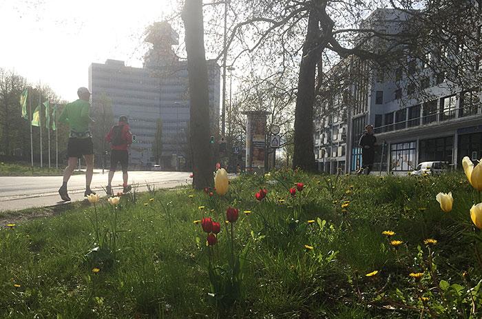 Zwei Läufer kurz vor dem Theodor-Heuss-Platz, im Hintergrund Sendegebäude des rbb