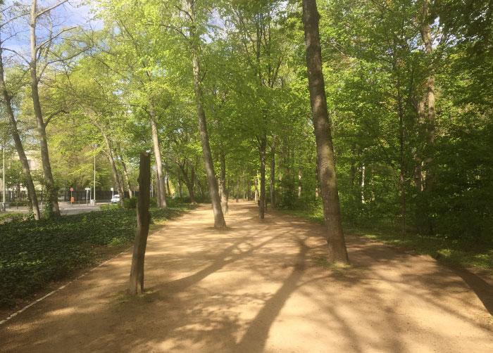 Parkweg am Tiergarten entlang