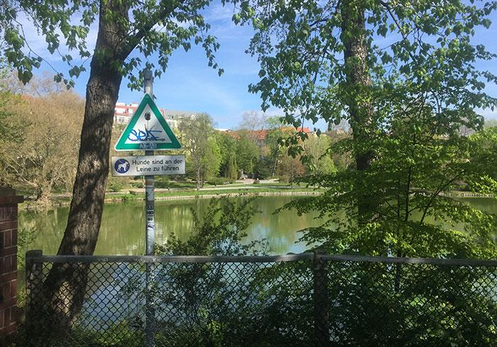 Blick auf den Lietzensee