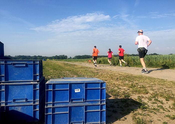 Blaue Boxen für die Spargelernte, im hintergrund Läufer*innen