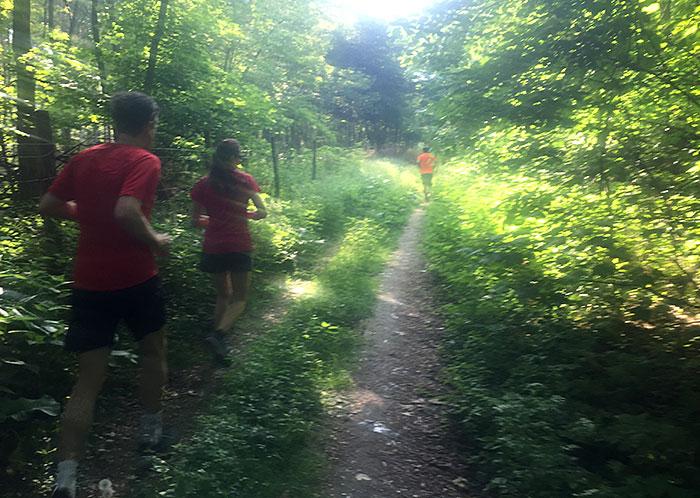 Läuferin und Läufer auf einem Waldpfad