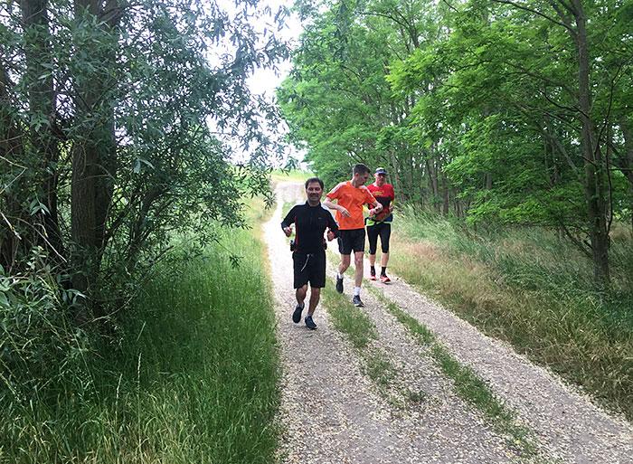Drei Läufer auf Waldweg