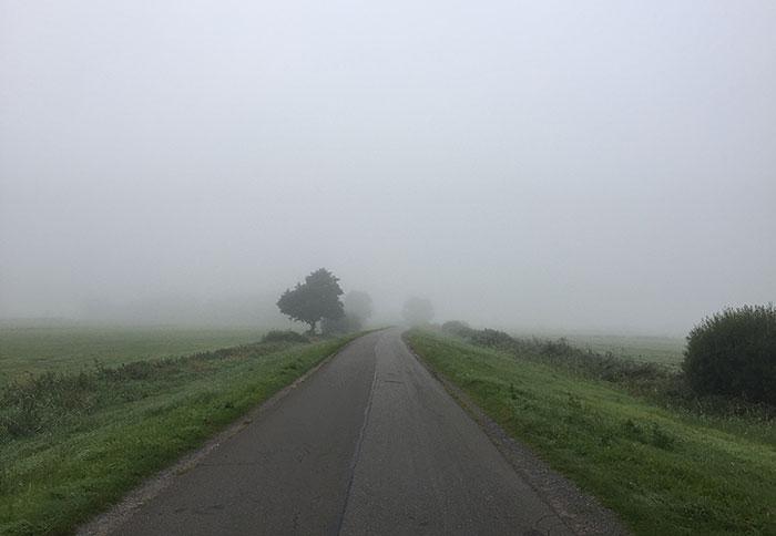 Asphaltierter Deichweg führt in die im Nebel verschwindende Landschaft