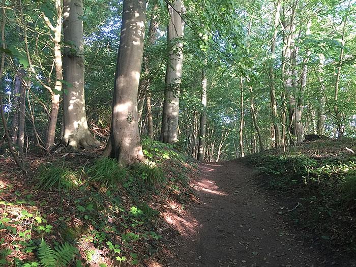 Weg führt über einen Hügel