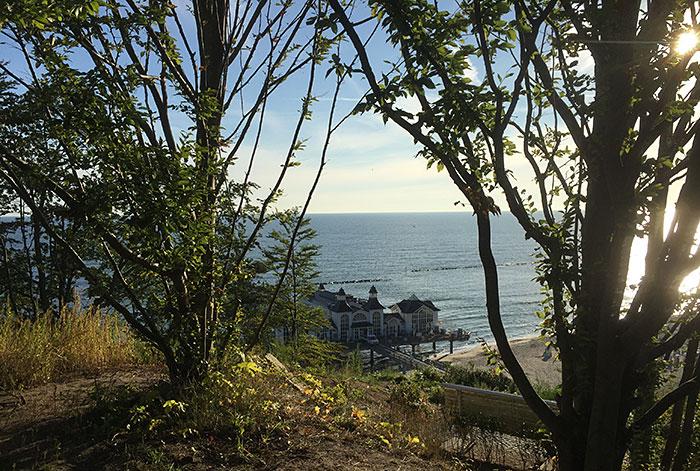 Blick von oben zwischen Bäumen hindurch auf die Seebrücke Sellin