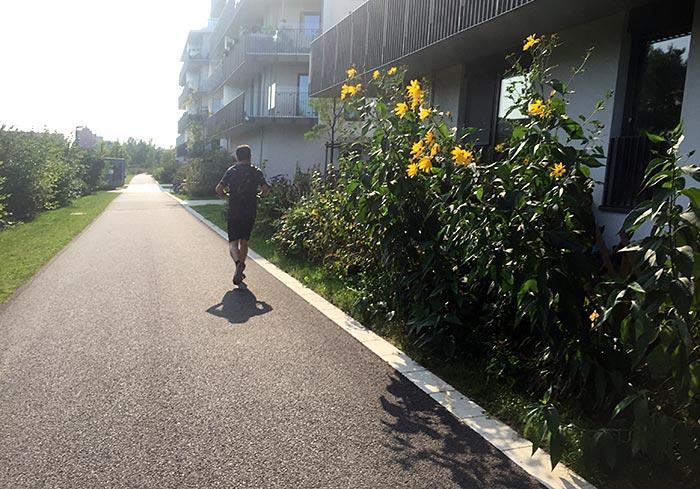Läufer an einem neu angelegten Weg, daneben moderne Häuser und Sonnenblumen